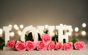 love-roses-and-love-word